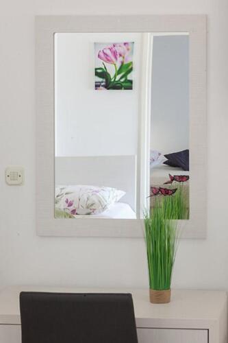 8v g a4k3 mirror